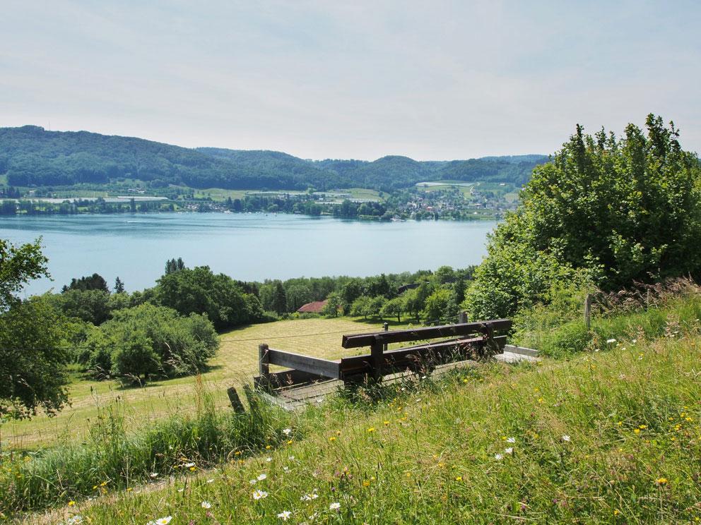 Blick vom Panoramaweg in Kattenhorn auf den Bodensee