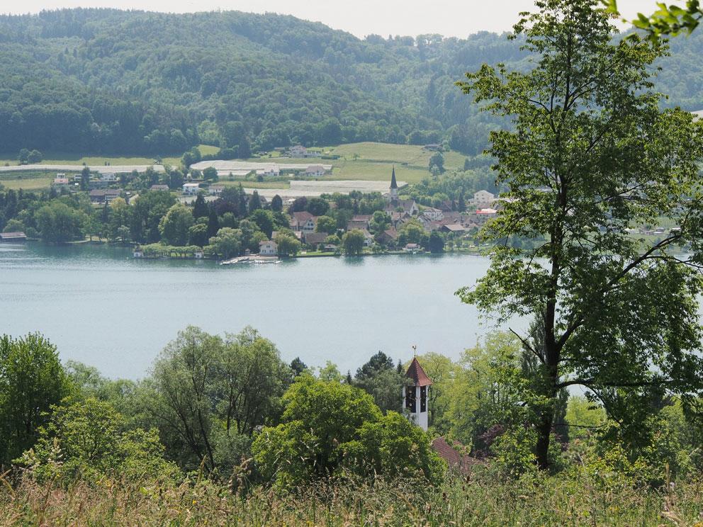 Ausblick auf den Bodensee vom Wanderweg