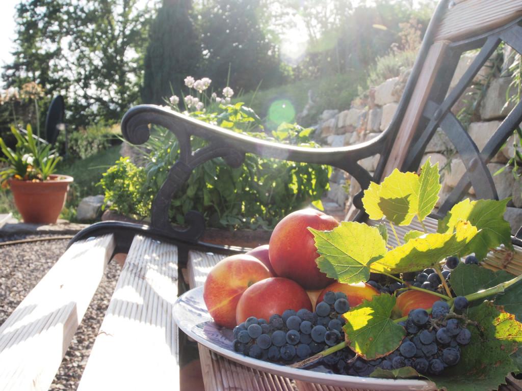 Gartenbank im Garten des Ferienhaus direkt am Bodensee